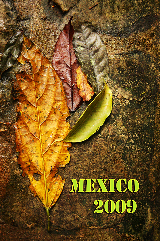 MexicoRES